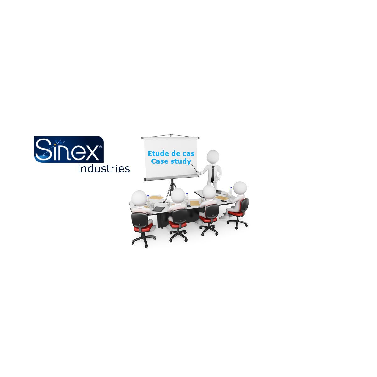 Sinex Industrie – Société LIFE PLASTIC